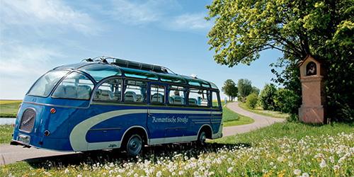 Tush tabiri avtobus